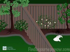 Assumption, A Dog & A Rabbit, findingourwaynow.com