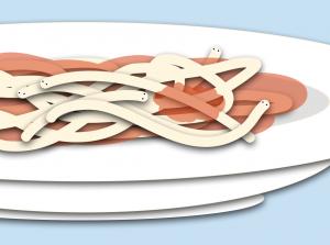 My Spaghetti Saga, findingourwaynow,com